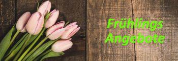 Frühlings-Angebote